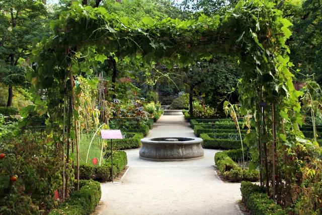 الحديقة النباتية الملكية في مدريد Jardin botanico madrid